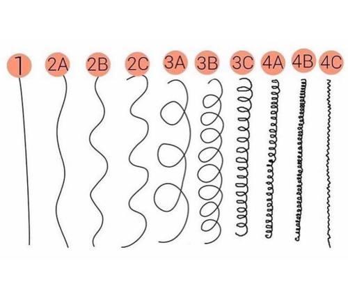 Dies ist Ihr ultimativer Leitfaden für Haartypen