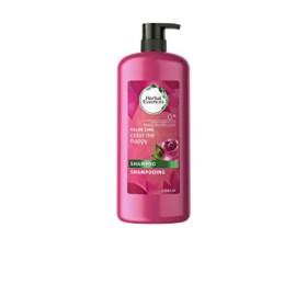 13 beste Shampoos für coloriertes Haar